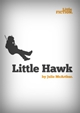 Little Fiction - Little Hawk