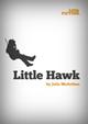 Little Fiction - Little Hawk